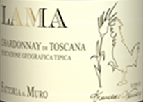 Lama – Chardonnay Di Toscana 2019